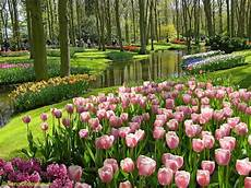 Taman Bunga Nusantara Flower Garden