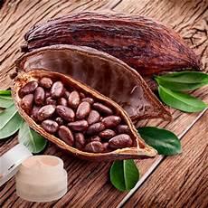 lippenpflege kakaobutter selber machen lippenpflege rezept lippenbalsam mit kakaobutter selber