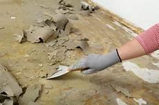 teppichboden entfernen 187 diese kosten entstehen