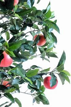 arbre fruitier intérieur arbre fruitier artificiel pommier plante pour int 233 rieur