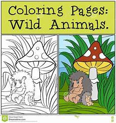 coloring pages animals hedgehog with
