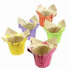 topfblumen als geschenk verpacken blumentopf bunt sort 216 12cm h9 5cm 10st einkaufen in