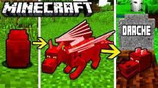 Ausmalbilder Minecraft Katze Drachen Lebenszyklus In Minecraft Vom Ei Bis Zum