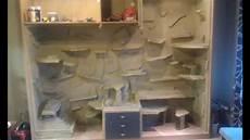 terrarium gebaut aus einem kleiderschrank