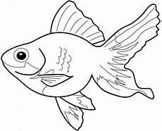 Ausmalbilder Bunte Fische Fische 7 Ausmalbilder Malvorlagen Tiere Malvorlagen