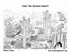 desert animals coloring pages printable 16950 desert coloring pages to and print for free