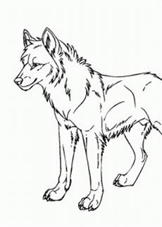 Malvorlagen Tiere A4 Wolf Animals Coloring Pages For Printable Free