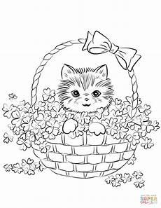 kitten in basket of shamrock coloring page free
