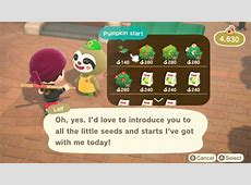 How To Get Pumpkins In Animal Crossing,Turkey Day (Thanksgiving) Event Guide – Animal Crossing,Animal crossing new horizons pumpkin guide|2020-11-30