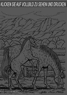 Ausmalbilder Pferde Bunt Blumen Zum Ausmalen Und Ausdrucken Search Results