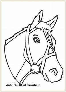 ausmalbilder pferde rassen ausmalbilder pferde zum ausdrucken 771 malvorlage alle