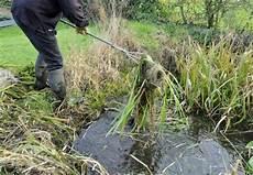algen auf pflastersteinen entfernen algen im teich entfernen anleitung in 6 schritten obi