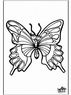 schmetterlinge 4 malvorlagen insekten