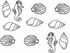 Muschel Ausmalbilder Malvorlagen Seepferdchen Mit Muscheln Ausmalbild Malvorlage Tiere