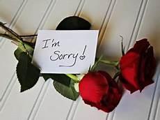 fiori per chiedere scusa fiori per scuse vendita consegna gratis