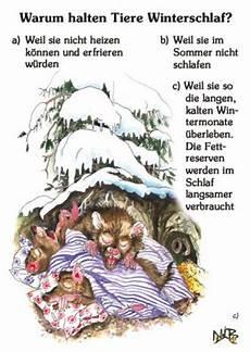 Malvorlagen Tiere Im Winterschlaf Warum Halten Tiere Winterschlaf Din A4 Quiztafel