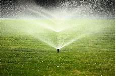 Rasen Pflege Rund Ums Jahr Was Wann Wichtig Ist Plantura