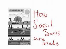 how fossil fuels are made science showme