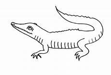 Malvorlage Kostenlos Krokodil Ausmalbilder Zum Drucken Malvorlage Krokodil Kostenlos 1