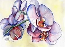disegni di fiori a matita i dipinti di giada 01 08 11 01 09 11
