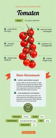 Wie Gesund Sind Tomaten - das solltest du 252 ber tomaten wissen lernen in