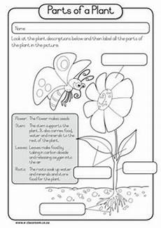 free plant worksheets 2nd grade 13733 2nd grade science on 2nd grades science and science lab safety