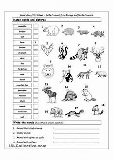 animal worksheets grade 2 13869 vocabulary matching worksheet animals from europe america ingles ni 241 os