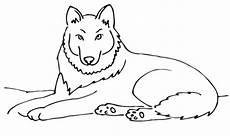 ausmalbilder gratis wolf ausmalbilder