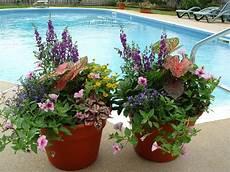 Pflanzkübel Modern Bepflanzen - 40 creative garden container ideas and plant pots