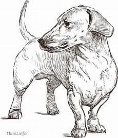 Hunde Ausmalbilder Dackel Ausmalbilder Mit Hunden Hunde