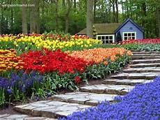 Free Desktop Wallpaper Flower Garden by Garden Wallpaper Free Pic Gallery
