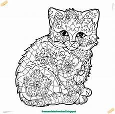Ausmalbilder Erwachsene Katze Malvorlagen Katzen Mandala 25 Bsta Malvorlage Katze