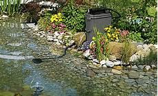 Teichreinigung Wasser Im Garten Teich Selbst De