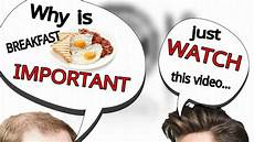 why is breakfast the most important meal of the day hindi youtube