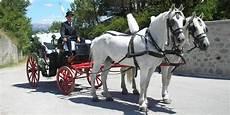 carrozza per cavalli giro in carrozza gratis con uberclop omaggiomania