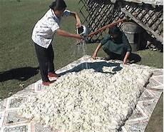 tappeti in feltro il tappeto di feltro progenitore dei tappeti persiani di