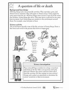 animal worksheets 4th grade 13886 animal worksheet new 899 animal adaptations worksheets fourth grade