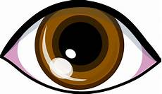 Brown Eye Clipart
