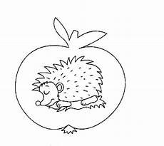 Ausmalbild Igel Winterschlaf Ausmalbilder Tiere Winterschlaf Kostenlose Malvorlagen Ideen
