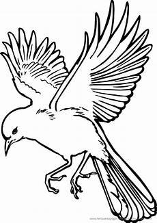 vogel malvorlage zum ausmalen coloring and malvorlagan
