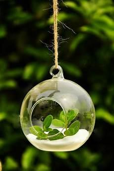 plante suspendue verre 87 photos et tutos diy faciles pour d 233 couvrir le charme du