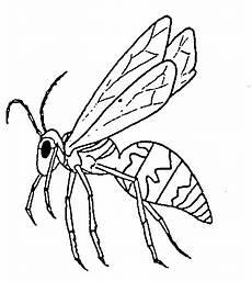 insekten malvorlagen met afbeeldingen illustraties