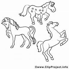Pferde Malvorlagen Gratis Kostenlose Malvorlagen Pferde