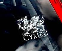 1000  Images About Welsh Dragon Tattoos On Pinterest