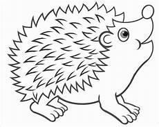 Igel Ausmalbild Klein Ausmalbilder Zootiere Zum Ausdrucken