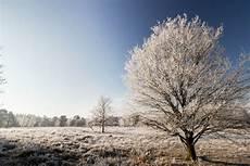 im winter in bispingen l 252 neburger heide weihnachten silvester