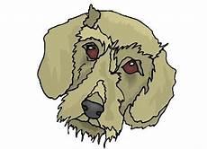 Malvorlage Liegender Hund Ausmalbild Hundekopf