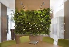 parete giardino salas con jardines verticales ideas para decorar