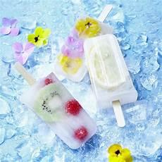 moule glace à l eau moules en inox hygi 233 niques pour des glaces 224 l eau et