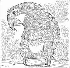 Malvorlagen Tiere Mandala Papagei Mandala Ausmalbilder Zum Ausdrucken Parrot Mandala